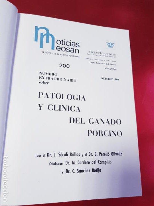Libros de segunda mano: PATOLOGÍA Y CLÍNICA DEL GANADO PORCINO-1980-trata coronavirus-NEOSÁN-TAPAS DURAS-EXCELENTE - Foto 6 - 194351120