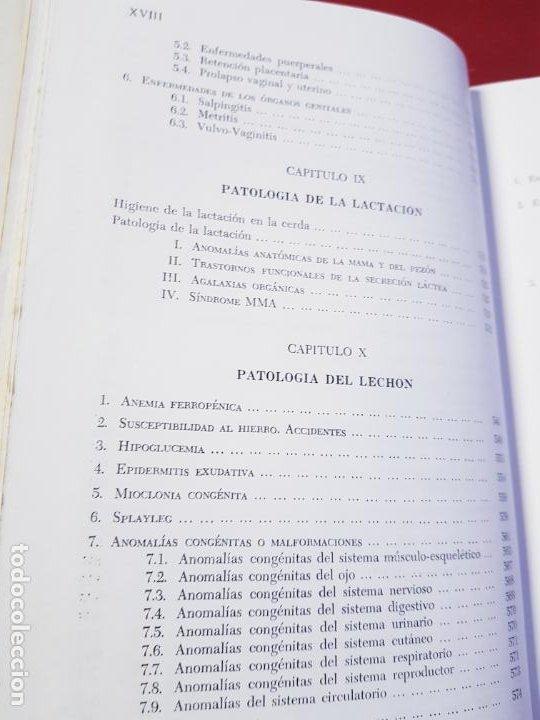 Libros de segunda mano: PATOLOGÍA Y CLÍNICA DEL GANADO PORCINO-1980-trata coronavirus-NEOSÁN-TAPAS DURAS-EXCELENTE - Foto 18 - 194351120
