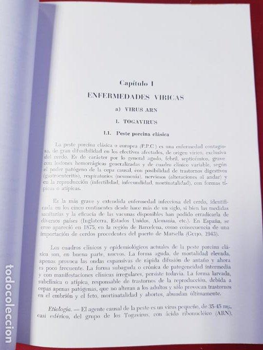 Libros de segunda mano: PATOLOGÍA Y CLÍNICA DEL GANADO PORCINO-1980-trata coronavirus-NEOSÁN-TAPAS DURAS-EXCELENTE - Foto 20 - 194351120