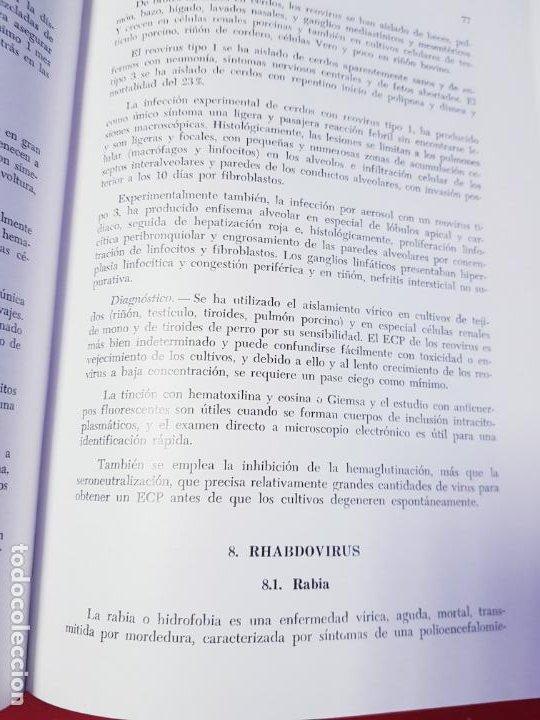 Libros de segunda mano: PATOLOGÍA Y CLÍNICA DEL GANADO PORCINO-1980-trata coronavirus-NEOSÁN-TAPAS DURAS-EXCELENTE - Foto 21 - 194351120