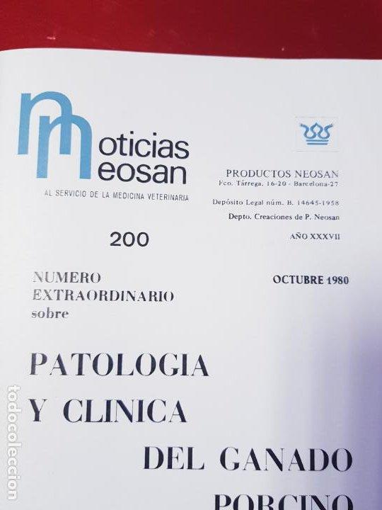 Libros de segunda mano: PATOLOGÍA Y CLÍNICA DEL GANADO PORCINO-1980-trata coronavirus-NEOSÁN-TAPAS DURAS-EXCELENTE - Foto 25 - 194351120