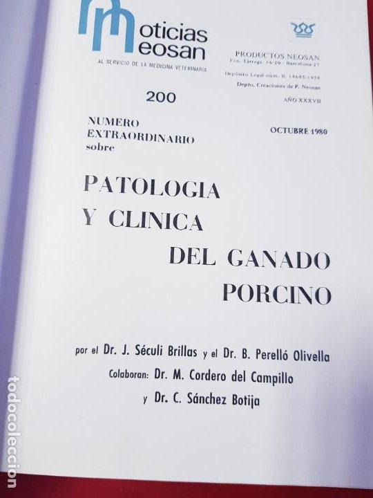 Libros de segunda mano: PATOLOGÍA Y CLÍNICA DEL GANADO PORCINO-1980-trata coronavirus-NEOSÁN-TAPAS DURAS-EXCELENTE - Foto 26 - 194351120
