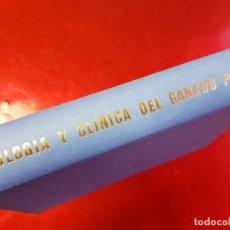 Libros de segunda mano: PATOLOGÍA Y CLÍNICA DEL GANADO PORCINO-1980-NEOSÁN-TRATA EL CORONAVIRUS-TAPAS DURAS-EXCELENTE. Lote 194351120