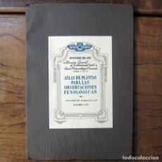 Libros de segunda mano: MINISTERIO DEL AIRE - ATLAS DE PLANTAS PARA LAS OBSERVACIONES FENOLÓGICAS - 1943 - METEOROLOGÍA. Lote 194509545