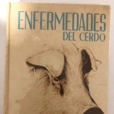 Libros de segunda mano: ENFERMEDADES DEL CERDO. HOWARD W. DUNNE 1ª ED. EN ESPAÑOL 1967. ILUSTRADO UNIÓN TIPOGRÁFICA ED. HIS. Lote 194524391
