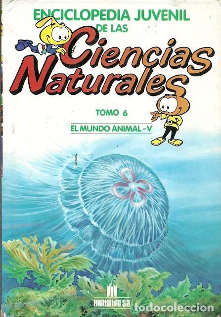 ENCICLOPEDIA JUVENIL DE LAS CIENCIAS NATURALES TOMO 6 EL MUNDO ANIMAL V (Libros de Segunda Mano - Ciencias, Manuales y Oficios - Biología y Botánica)