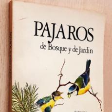 Libros de segunda mano: PÁJAROS DE BOSQUE Y DE JARDÍN - LAMBERT, TERENCE (ILUSTR.) / MITCHELL, ALAN (TEXTOS). Lote 194601407