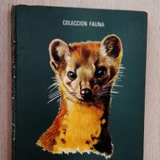 Libros de segunda mano: FAUNA EUROPEA. (ED. TIMUN MAS, COL. FAUNA, 1970) - ROBY (AUTOR) / DALLET, ROBERT (ILUSTR.). Lote 194601431