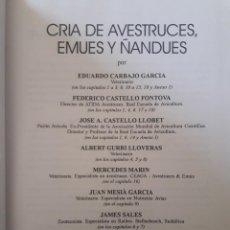 Libros de segunda mano: CRÍA DE AVESTRUCES, EMUES Y ÑANDUES / EDUARDO CARBAJO Y OTROS / REAL ESCUELA DE AVICULTURA / 2ª EDIC. Lote 194666482