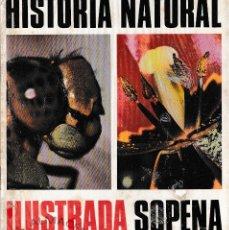 Libros de segunda mano: HISTORIA NATURAL ILUSTRADA (EDITORIAL SOPENA 1975) AUN RETRACTILADO, SIN USAR. Lote 194721083