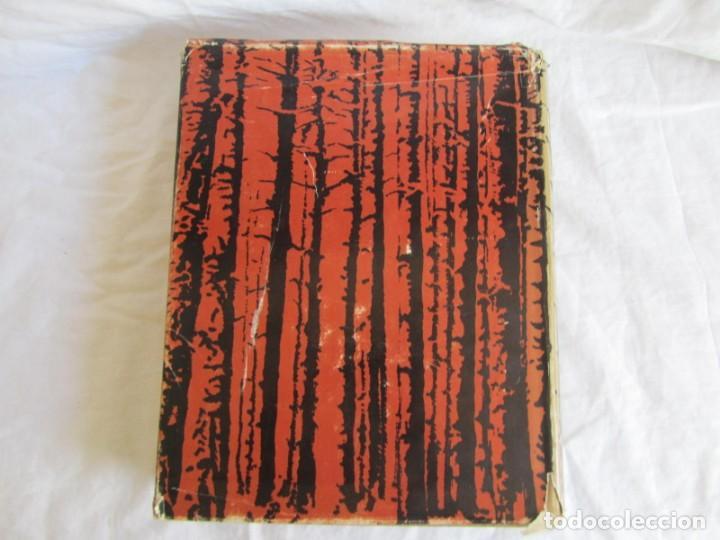 Libros de segunda mano: Sexto congreso Forestal mundial Tomo 1 1966, Español, francés e inglés - Foto 3 - 194876661