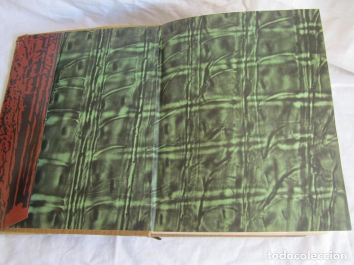 Libros de segunda mano: Sexto congreso Forestal mundial Tomo 1 1966, Español, francés e inglés - Foto 8 - 194876661