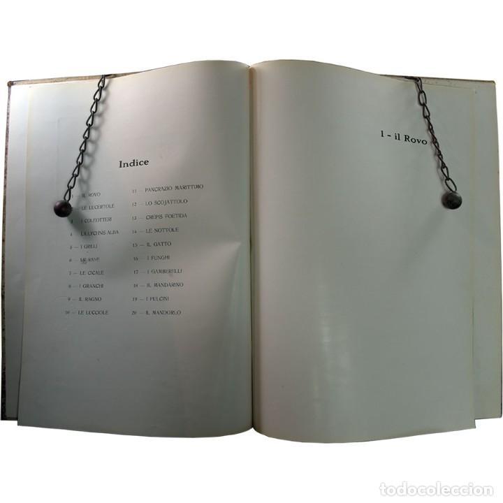 Libros de segunda mano: LIBRO ANTIGUO. A VOI BIMBI, EDOARDO GIOJA. 1960 - Foto 3 - 194886425