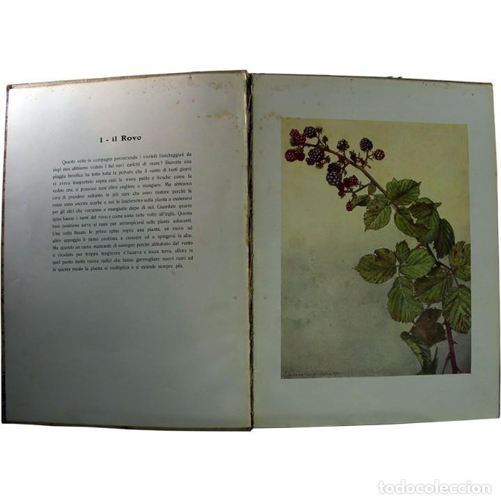 Libros de segunda mano: LIBRO ANTIGUO. A VOI BIMBI, EDOARDO GIOJA. 1960 - Foto 4 - 194886425