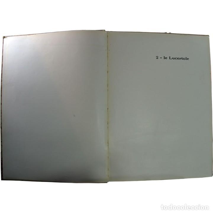 Libros de segunda mano: LIBRO ANTIGUO. A VOI BIMBI, EDOARDO GIOJA. 1960 - Foto 5 - 194886425