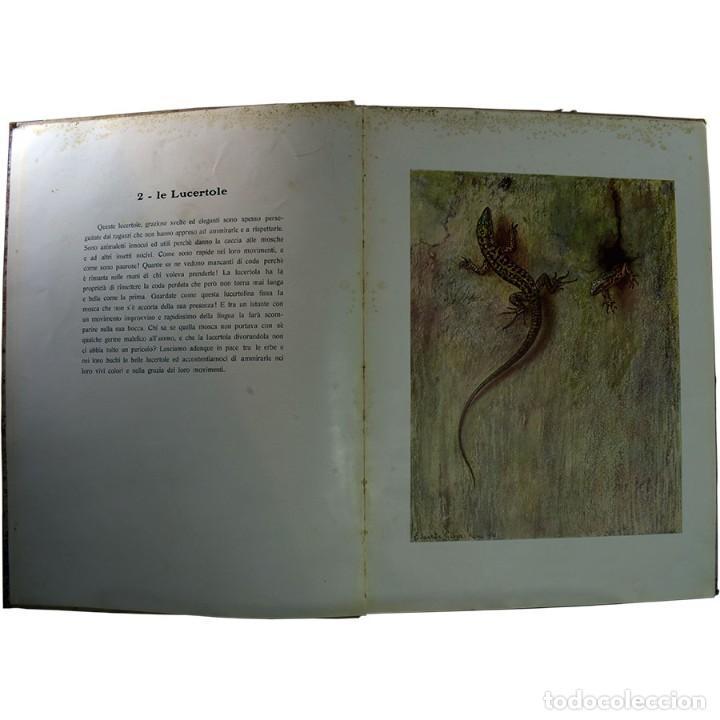 Libros de segunda mano: LIBRO ANTIGUO. A VOI BIMBI, EDOARDO GIOJA. 1960 - Foto 6 - 194886425