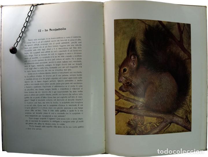 Libros de segunda mano: LIBRO ANTIGUO. A VOI BIMBI, EDOARDO GIOJA. 1960 - Foto 10 - 194886425