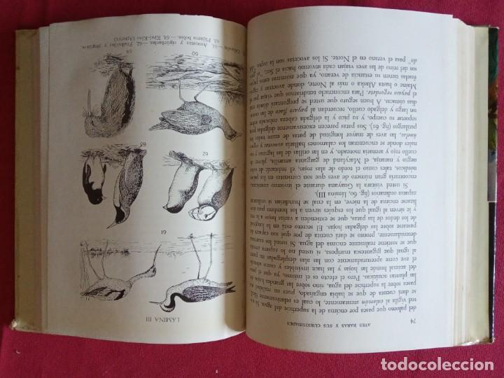 Libros de segunda mano: Aves Raras y sus Curiosidades. A. Hyatt Verrill. - Foto 3 - 194897588