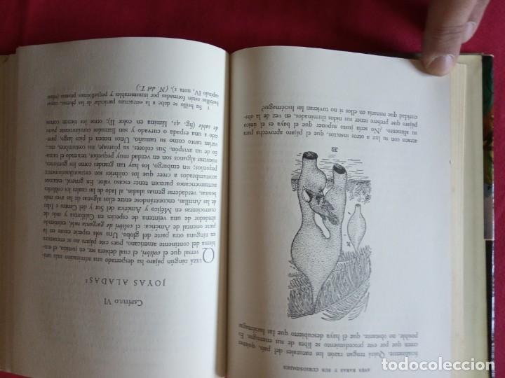 Libros de segunda mano: Aves Raras y sus Curiosidades. A. Hyatt Verrill. - Foto 4 - 194897588