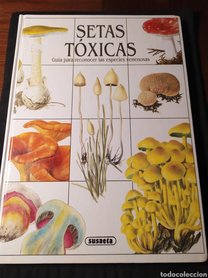 SETAS TÓXICAS. GUÍA PARA RECONOCER LAS ESPECIES VENENOSAS (Libros de Segunda Mano - Ciencias, Manuales y Oficios - Biología y Botánica)