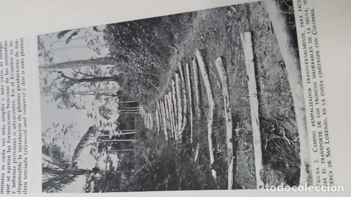 Libros de segunda mano: Sexto congreso Forestal mundial Tomo 1 1966, Español, francés e inglés - Foto 16 - 194876661