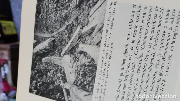 Libros de segunda mano: Sexto congreso Forestal mundial Tomo 1 1966, Español, francés e inglés - Foto 17 - 194876661