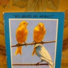 Libros de segunda mano: MIS AMIGOS LOS ANIMALES: MIS CANARIOS. VERSIÓN DE LA OBRA DE ROBERT FOURNIER. GUSTAVO GILI 1.974.. Lote 194970363