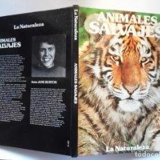 Libros de segunda mano: ANIMALES SALVAJES, GRAN ÁLBUM FOTOGRÁFICO DE JANE BURTON. Lote 195057663