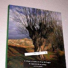 Libros de segunda mano: EL CHOPO CABECERO EN EL SUR DE ARAGÓN. LA IDENTIDAD DE UN PAISAJE. CHABIER DE J. LORÉN Y F. HERRERO. Lote 195137673