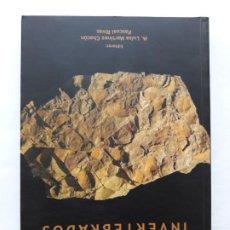 Livres d'occasion: PALEONTOLOGÍA DE INVERTEBRADOS, TAPA BLANDA ,2009, Mª LUISA MARTÍNEZ CHACÓN. Lote 195189240