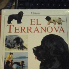 Libros de segunda mano: EL TERRANOVA (BARCELONA, 2000). Lote 195227651