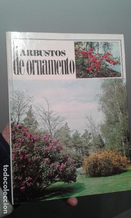LOS ARBUSTOS DE ORNAMENTO (Libros de Segunda Mano - Ciencias, Manuales y Oficios - Biología y Botánica)