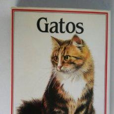 Libros de segunda mano: GATOS SUSAETA. Lote 195302775
