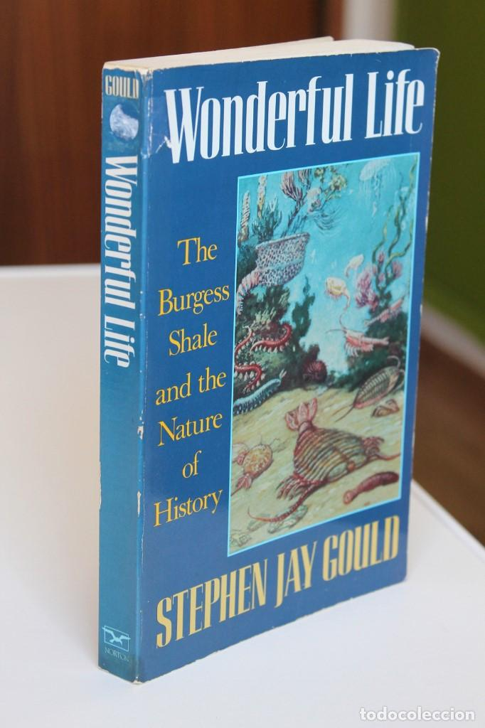 Libros de segunda mano: Stephen Jay Gould - Wonderful life. The Burgess Shale and the nature of history - Norton - Foto 1 - 195308543