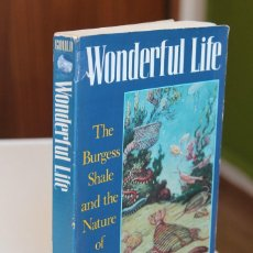 Libros de segunda mano: STEPHEN JAY GOULD - WONDERFUL LIFE. THE BURGESS SHALE AND THE NATURE OF HISTORY - NORTON. Lote 195308543