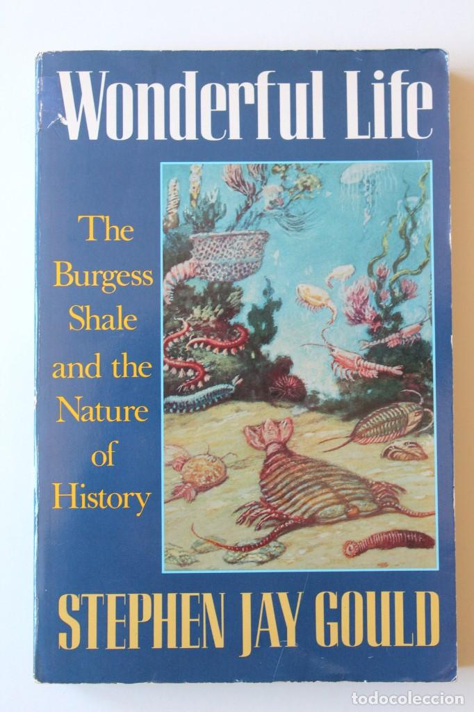 Libros de segunda mano: Stephen Jay Gould - Wonderful life. The Burgess Shale and the nature of history - Norton - Foto 2 - 195308543