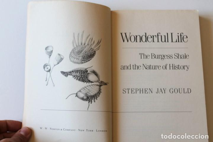 Libros de segunda mano: Stephen Jay Gould - Wonderful life. The Burgess Shale and the nature of history - Norton - Foto 4 - 195308543