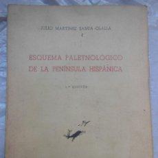 Libros de segunda mano: ESQUEMA PALEONTÓLOGICO DE LA PENÍNSULA IBÉRICA. MARTÍNEZ SANTA-OLALLA JULIO. 1946. Lote 195369447