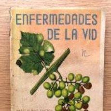 Libros de segunda mano: ENFERMEDADES DE LA VID / AURELIO RUIZ CASTRO / MINISTERIO AGRICULTURA /. Lote 195649957