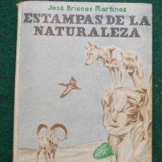 Libros de segunda mano: ESTAMPAS DE LA NATURALEZA JOSÉ BRIONES MARTINEZ. Lote 195691788