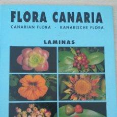 Libros de segunda mano: CARPETA NÚMERO 2 DE LA COLECCIÓN FLORA CANARIA, JOSÉ ALFREDO PÉREZ MARTÍN 20 LÁMINAS. Lote 196958251