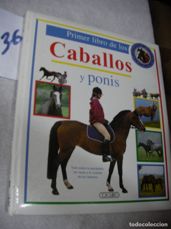 Usado, CABALLOS Y PONIS segunda mano
