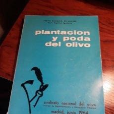Libros de segunda mano: PLANTACION Y PODA DEL OLIVO . PEDRO CADAHIA CICUENDEZ DOCTOR INGENIERO AGRONOMO. Lote 197307091