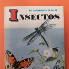 Livros em segunda mão: LIBRO DE INSECTOS EDITORIAL BIBLIOTECA DAIMON AUTOR MANUEL TAMAYO 159 PÁGINAS FOTOS A COLOR. Lote 199241223