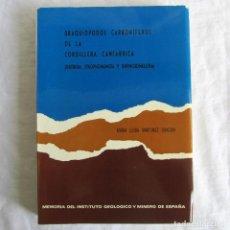 Libros de segunda mano: BRAQUIÓPODOS CARBONÍFEROS DE LA CORDILLERA CANTÁBRICA, M.L. MARTINEZ CHACÓN 1979. Lote 199310306