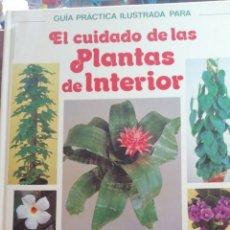 Libros de segunda mano: EL CUIDADO DE LAS PLANTAS DE INTERIOR GUÍA PRÁCTICA ILUSTRADA. Lote 199575582