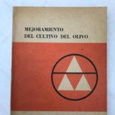 Libros de segunda mano: MEJORAMIENTO DEL CULTIVO DEL OLIVO, PANSIOT Y REBOUR, FAO, ESTUDIOS AGROPECUARIOS, 1963. Lote 199764187