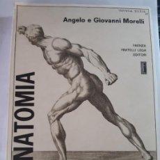 Libros de segunda mano: ANATOMIA PER GLI ARTISTI, ANGELO E GIOVANNI MORELLI. FAENZA FRATELLI LEGA, EDITORI. Lote 200545030