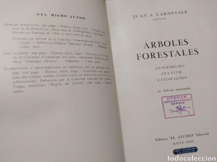 Libros de segunda mano: Árboles Forestales Juan A. Carnevale. - Foto 2 - 205041473