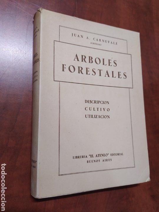 ÁRBOLES FORESTALES JUAN A. CARNEVALE. (Libros de Segunda Mano - Ciencias, Manuales y Oficios - Biología y Botánica)